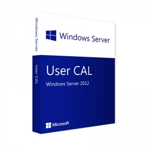 Microsoft Windows Server 2012 USER CAL
