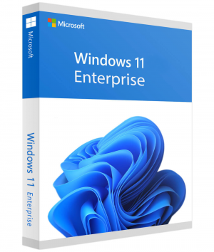 Microsoft Windows 11 Enterprise